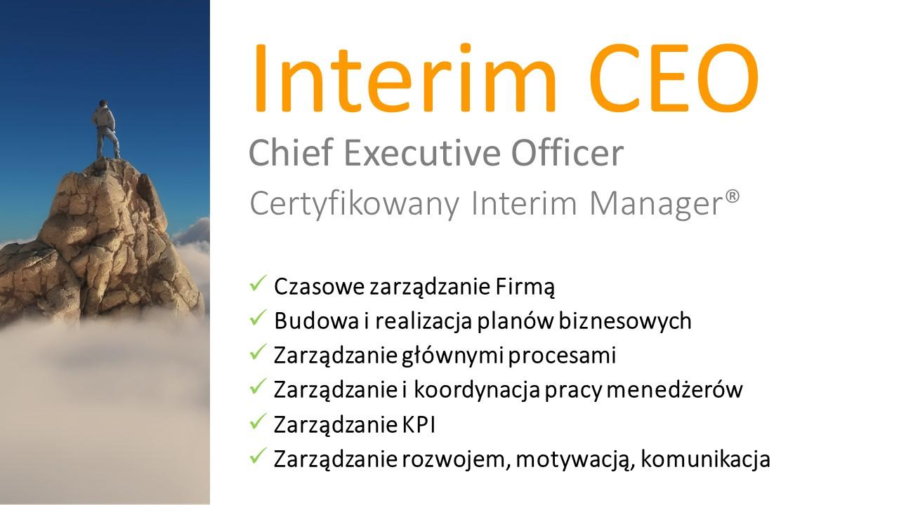 Interim CEO anacco